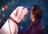 Viņš uzveda savu suni uz skatuves, kad viņa atvēra savu muti visi bija šokā VIDEO