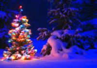 Sinoptiķi prognoze: vai Ziemassvētkos gaidāms sniegs?!
