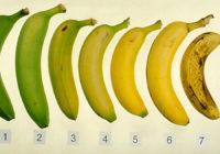 Lūk, kādus banānus ēst ir visveselīgāk!