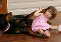 Divgadīga meitenīte spēlējās ar dobermani, kad tas pēkšņi viņai uzbruka…