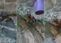 12 gadīgs puika aizvadija 3 dienas «iemūrēts» sienā FOTO