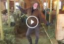 50 gadīgais fermeris uzdejoja savām kazām un kļuva par interneta zvaigzni!