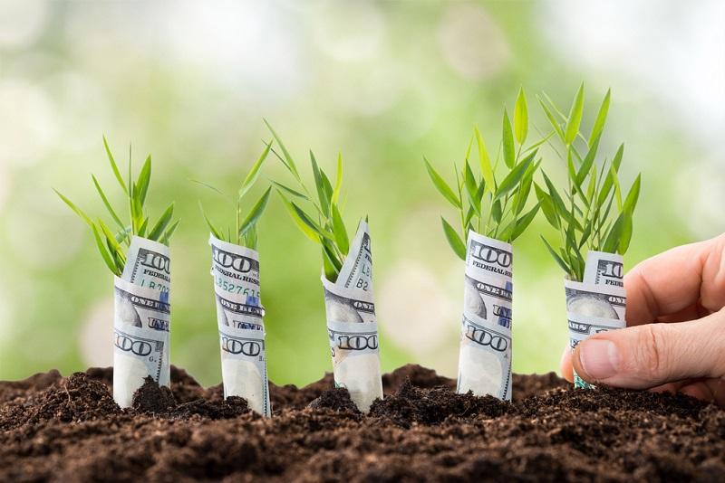 Kašķi par naudu var pat izjaukt ģimeni. Kā no tiem izvairīties?