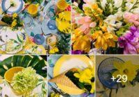 FOTO: Gundega Skudriņa un Ieva Bondare atklāj pavasarīga galda klāšanas noslēpumus