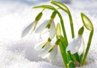 Īss un konkrēts horoskops nedēļai no 18. līdz 24. martam. Tev patiks!