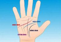 Četras galvenās rokas līnijas un to nozīme. Tev jāzina!
