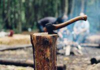 Dabas aizstāvji cirtīs vairāk nekā 300 hektārus koku nacionālajā parkā