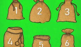 Tests. Izvēlies maisiņu un uzzini, cik praktisks cilvēks esi!
