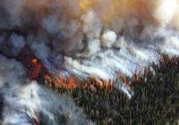 VIDEO: Sibīrijā plosās simtiem ugunsgrēku miljoniem hektāru platībā; daudzus nemaz nedzēš