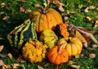 Četrām horoskopa zīmēm no 10. līdz 21. oktobrim gaidāms vienkārši ideāls laiks!