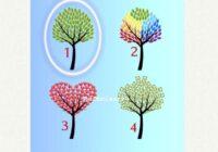 TESTS. Izvēlies koku un uzzini, kas tev dzīvē palīdz!