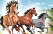 TESTS. Izvēlies zirgu un uzzini, vai sasniegsi mērķi!