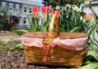 Edgara Alana horoskops svētdienai: ieliec somā smaidu un dodies pie dabas!